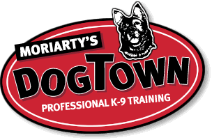 Moriarty's DogTown